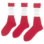 LUCKY SOCKS Silk Mix Rib Socks 2 / Smooth Ankle Socks 2